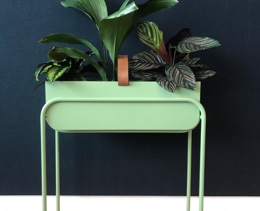 Green metal table with green plants on top